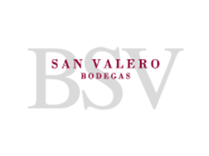 Logotipo-BSV-Positivo-Color